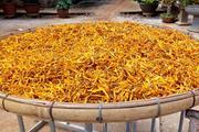 Đặc sản quý hoa kim châm giá nửa triệu đồng/kg chỉ mùa hè mới có