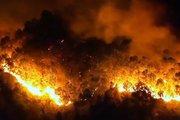 Thủ tướng yêu cầu tăng cường các biện pháp phòng chữa cháy rừng