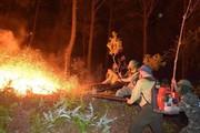Cháy rừng thông ở Hà Tĩnh, Thủ tướng lập tức ra công điện khẩn
