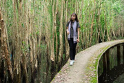Có một không gian xanh mướt, yên bình thế này ở làng nổi Tân Lập