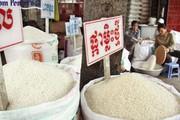 Sang Campuchia học làm thương hiệu gạo