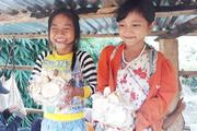 Chợ nông sản 10.000 đồng nằm lưng chừng đỉnh đèo Măng Rơi