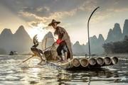 """Nghề câu cá độc đáo """"có một không hai"""" của ngư dân TQ từ thời nhà Tống"""