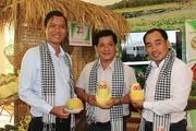 Tái cơ cấu nông nghiệp: Làm gì để trái xây Việt vươn ra biển lớn