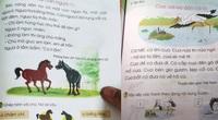 Sách tiếng Việt lớp 1 Cánh Diều sẽ được chỉnh sửa như thế nào?