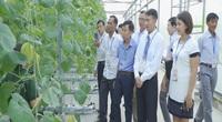 """63 """"siêu"""" nông dân hội tụ học tập mô hình công nghệ cao tại Nông trường VinEco Hải Phòng"""