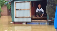 Báo NTNN/ Dân Việt kêu gọi ủng hộ đồng bào miền Trung bị lũ lụt