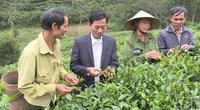Thanh Hóa: Ở xã miền núi xa xôi có tới 2 sản phẩm lâm nghiệp OCOP