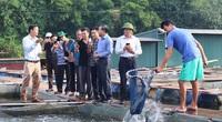 """Các """"nhà"""" bàn giải pháp gắn sao OCOP cho sản phẩm cá nuôi lồng bè"""