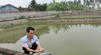 Hà Nội: Hỗ trợ vốn vay hơn 216 tỷ đồng cho 10.000 nông  dân
