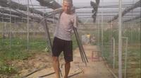 """Quảng Nam: Khuyết tật đôi tay, 8x """"đánh liều"""" thế chấp nhà đất làm nông nghiệp hữu cơ"""
