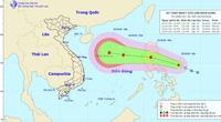 Biển Đông sắp đón bão số 8, cảnh báo thông tin giả mạo về cường độ của bão