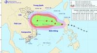 Nóng: Biển Đông đón bão số 8, miền Trung nguy cơ lại hứng mưa lớn