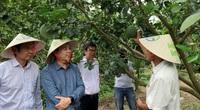Dự án hỗ trợ 80.000 nông hộ nhỏ ứng phó dịch Covid-19 và hạn mặn được triển khai tại ĐBSCL