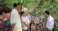 Lai Châu: Được học nghề, nhà nông trồng lúa năng suất cao, nuôi gà hiệu quả