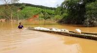 """Kon Tum: Thủy điện Plei Kần tích nước """"vô lối"""": Đề nghị xử lý 2 vi phạm nghiêm trọng của Công ty Tấn Phát"""