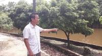 Nước ao đổi màu, cá chết hàng loạt ở Thái Nguyên: Giật mình với kết quả quan trắc