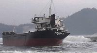Tàu hàng chở 1.830 tấn bột mì bất ngờ gặp nạn trên đường đến Hải Phòng