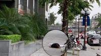 Hà Nội: Một phụ nữ rơi từ chung cư xuống đất tử vong