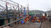 Bão số 9: Bình Định cấm biển, 190 tàu đang di chuyển khỏi vùng nguy hiểm