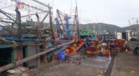 Trước giờ bão số 9 đổ bộ: Tàu cá Bình Định cứu 5 ngư dân Phú Yên thoát chết