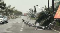 Hình ảnh thiệt hại đầu tiên ở TP.Quy Nhơn trong bão số 9