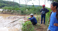 Thủy điện tích nước vô lối ở tỉnh Kon Tum: Thu hồi giấy phép nếu không bồi thường cho nông dân và tiếp tục sai