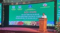 Supe Lâm Thao đồng hành cùng nông dân Thái Bình sản xuất trồng trọt quy mô lớn