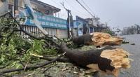 """Bãi """"chiến trường"""" mà bão số 9 tràn qua và để lại ở Đà Nẵng, Quảng Nam, Quảng Ngãi"""