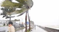 Ứng phó bão số 9, rà soát lại người, tàu vận tải ở khu vực nguy hiểm
