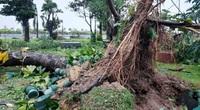 Ảnh: Nhà dân bị tốc mái, ngập lụt... ở tỉnh Bình Định do bão số 9