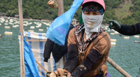 """Quảng Ninh: Khổ, hơn 100.000 tấn ngao, hàu, tôm, cá đã to lắm rồi nhưng nông dân """"nhấp nhổm"""" vì điều này"""