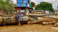 Quảng Bình: Hai ông cháu đánh cá cứu mạng hơn 100 người trong lũ dữ