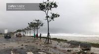 TRỰC TIẾP bão số 9 - Molave: Bão đang quần thảo Quảng Nam - Quảng Ngãi, cảnh báo lũ