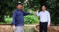 """Đồng Nai: Thăm """"biệt phủ"""" của những nông dân tỷ phú giàu nhờ trồng bưởi, có nhà kiếm tiền tỷ từ thứ bưởi vứt đi"""