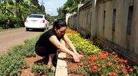 """10 năm xây dựng NTM ở Quảng Trị - Kỳ cuối: """"Lên dây cót"""" để bứt phá về đích"""