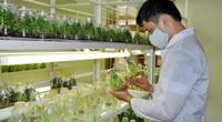 Tìm nhân lực làm nông nghiệp công nghệ cao