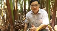 Có một không hai ở Việt Nam: Anh kỹ sư hot boy bắt cây dừa nước tiết ra mật