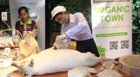Chợ phiên organic tại Sài Gòn: Mang heo rừng hữu cơ xẻ thịt bán tại chỗ