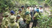 Quỹ Bảo vệ và phát triển rừng Quảng Nam: Vượt khó khăn để hoàn thành nhiệm vụ