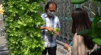 Nông dân Củ Chi trồng cả vườn rau chỉ với 0,3m2 mặt sàn