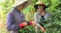 Mỹ đã đầu tư 23,9 triệu đô la bảo vệ đa dạng sinh học cho Dự án Trường Sơn Xanh