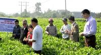 Trên 2 triệu ha áp dụng IPM, Bộ NNPTNT ra chỉ thị mở rộng trên các cây trồng chủ lực