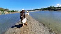 Bình Định: Nuôi 3.000 con cá chua đặc sản, sợ bão lụt vợ chồng ông nông dân bắt bán vội vẫn còn lời chán