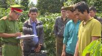 Đắk Lắk: Bắt đối tượng chặt 30 cây sầu riêng sau gần 10 ngày truy tìm