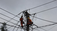 PC Gia Lai: Xây dựng kế hoạch cung ứng điện phục vụ Tết Nguyên đán Tân Sửu 2021