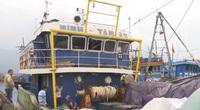Ngư dân Đà Nẵng lo lắng cho vụ đánh bắt cuối năm