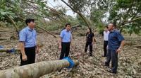 Phó Thống đốc Đào Minh Tú hiến kế giúp người dân miền Trung - Tây Nguyên khắc phục sau bão, lũ