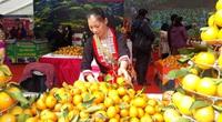 Nguy cơ khủng hoảng thừa, Hà Giang tính cách chế biến sâu quả cam