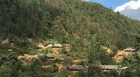 Bản nghèo Pơ Mu giữ rừng bền vững
